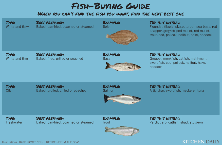 A Guide To Fish Varieties Infographic Huffpost