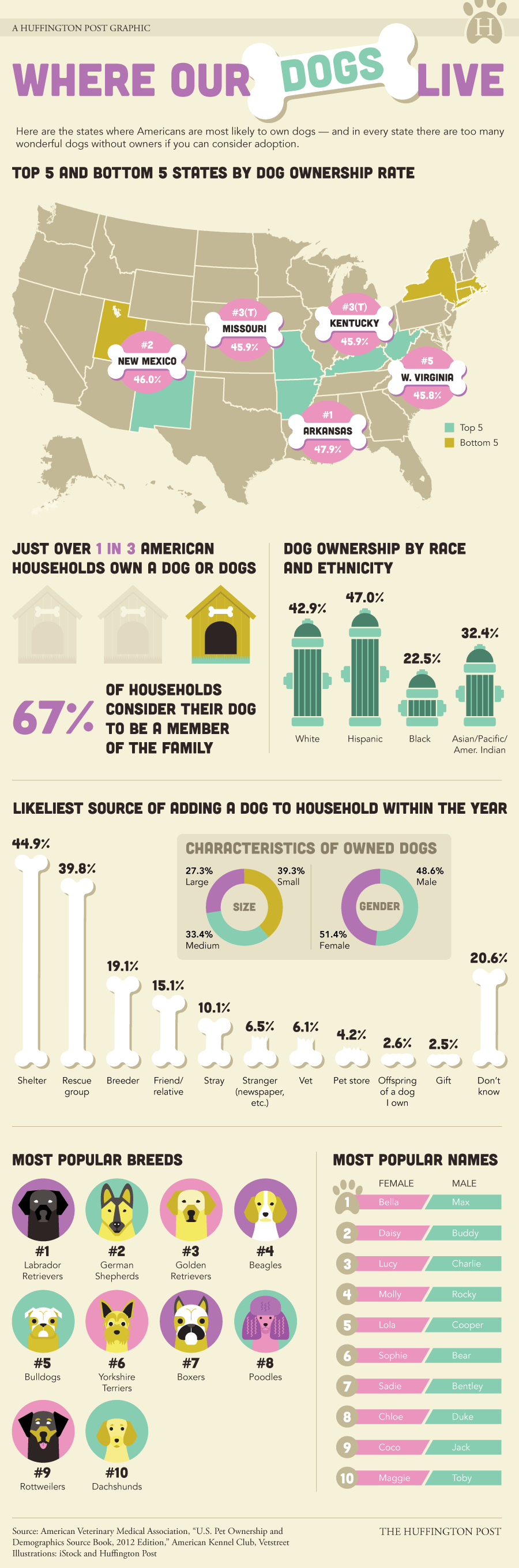 The Most DogLoving States In America INFOGRAPHIC HuffPost - Stray animals in the us map