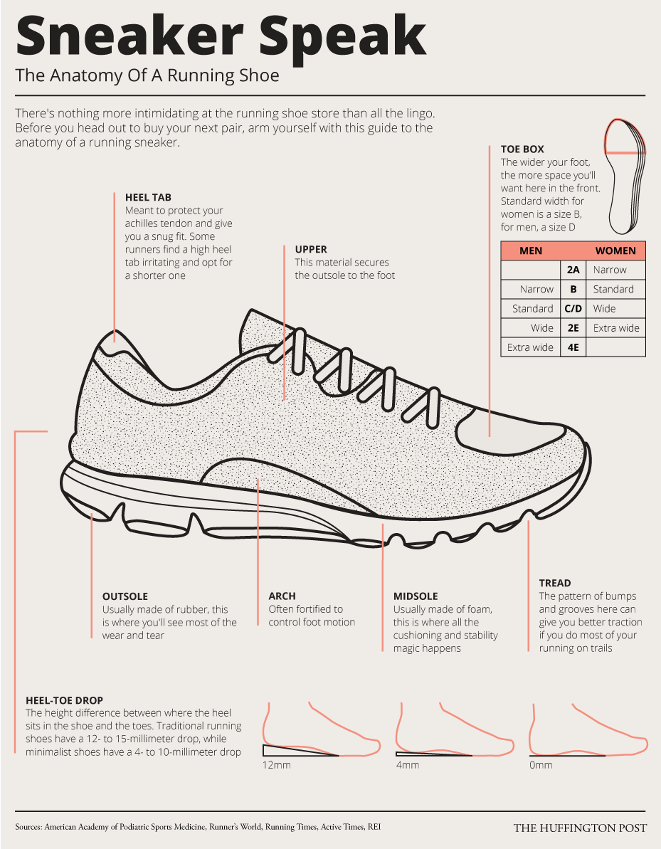 Everything You Ever Wanted To Know About Running Shoes In One Simple