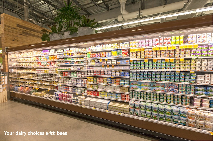 the role of large chain supermarkets essay Marketing strategy of the supermarkets 4 i introduction supermarkets and hypermarkets, since they appeared, have played an important role in food distribution.