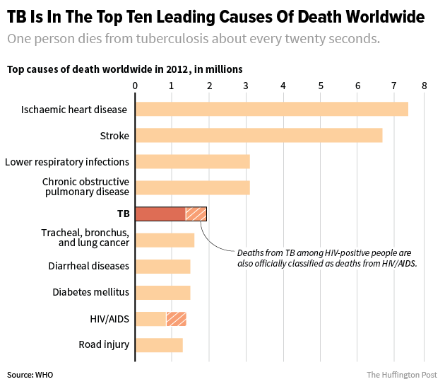 An Entirely Curable Disease Is A Top 10 Killer Around The World