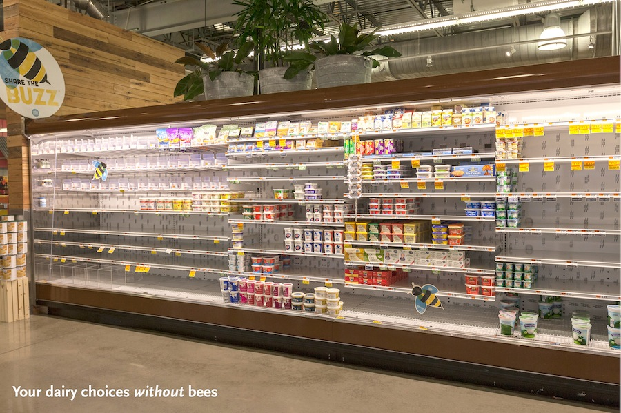 This Is What Your Grocery Store Looks Like Without Bees PHOTOS