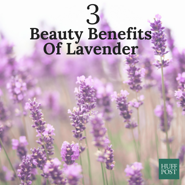 beauty benefits of lavender