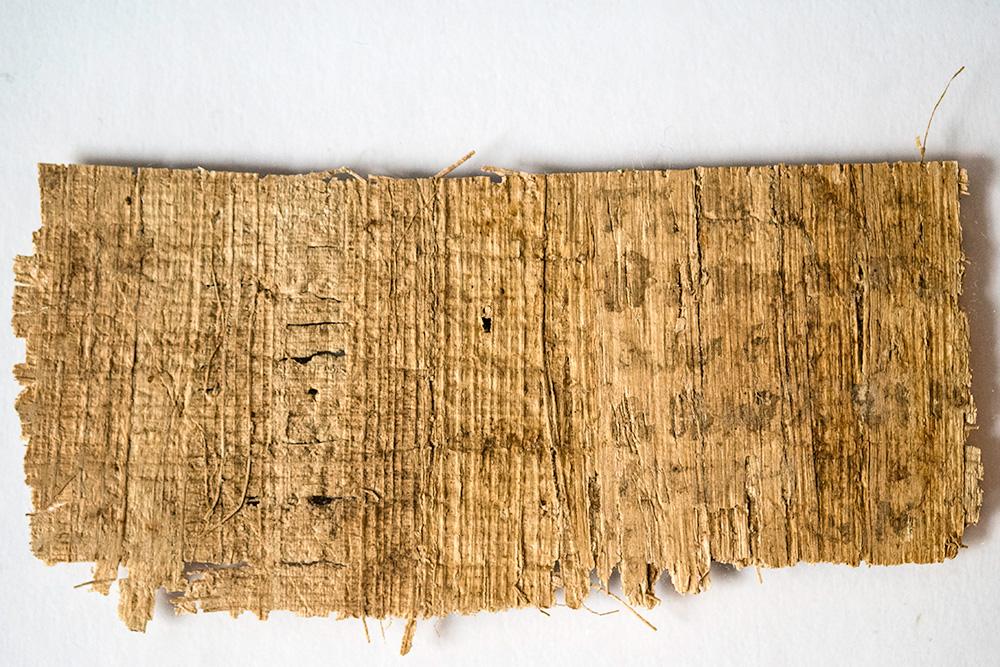 [Image: papyrus_back_lg.jpeg]