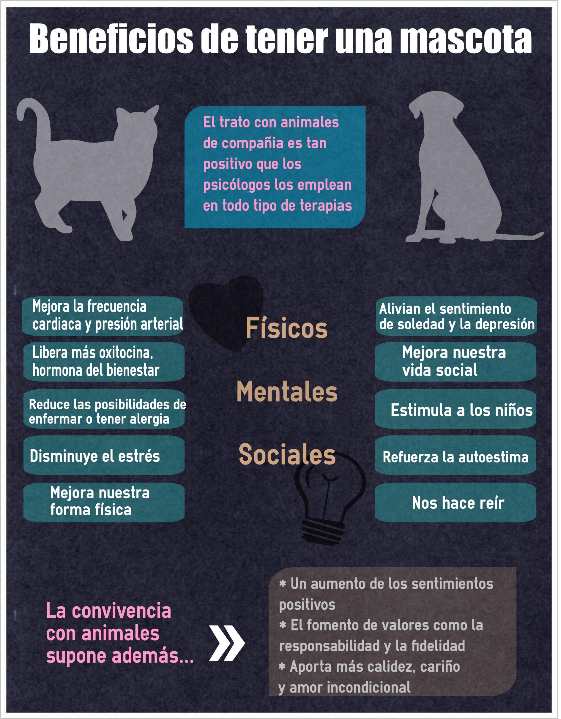 10 razones por las que tener una mascota en casa es bueno para ti huffpost - Perros para tener en casa ...