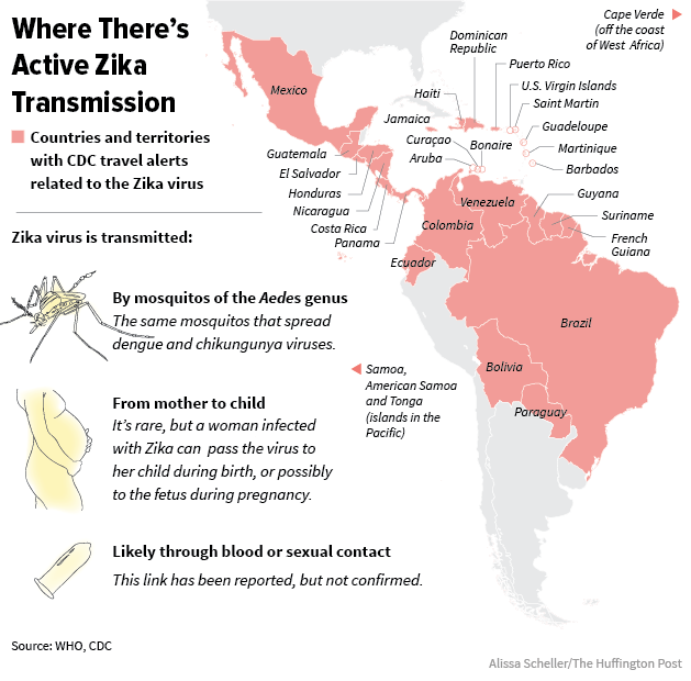 The Latest On Zika Argentinas Mosquito Problem Deepens HuffPost - Argentina zika map