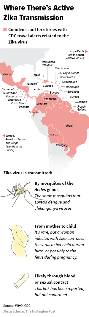 The Latest On Zika Argentinas Mosquito Problem Deepens Huffpost Life - Us-mosquito-population-map
